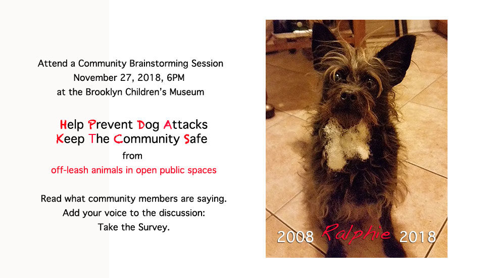 Friends of Brower Park | Community Brainstorming Session: Dog Policy
